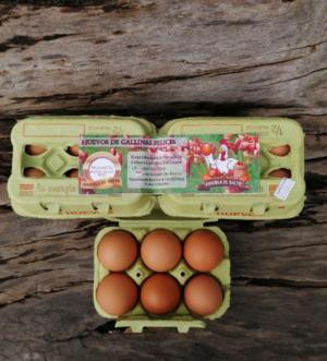 Huevos Avícola El Salto