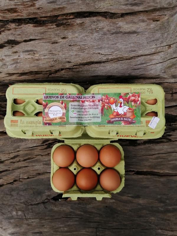 Huevos_CE042