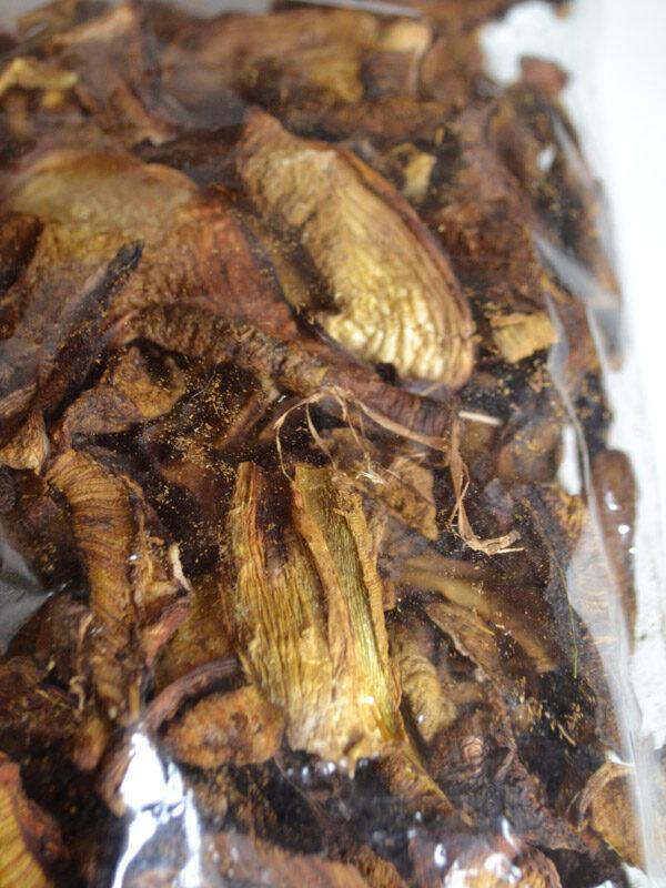 boletus-hongo-deshidratado-03
