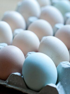 huevos-de-campo-01
