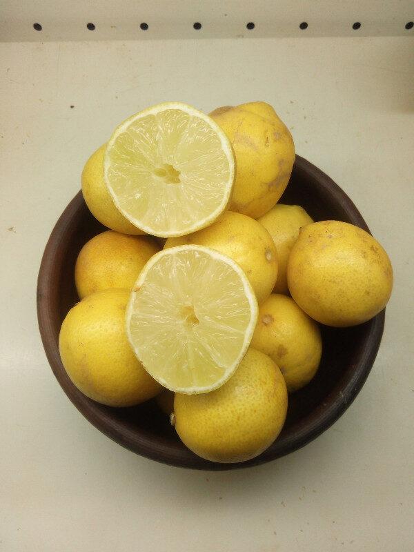 limon_sutil