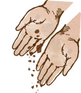 manos-siembran