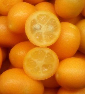 Quinoto o Kumquat