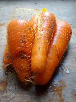 zanahorias-02.jpg