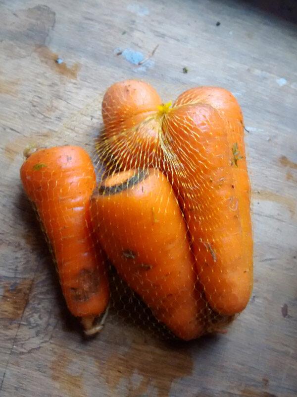 zanahorias-03.jpg