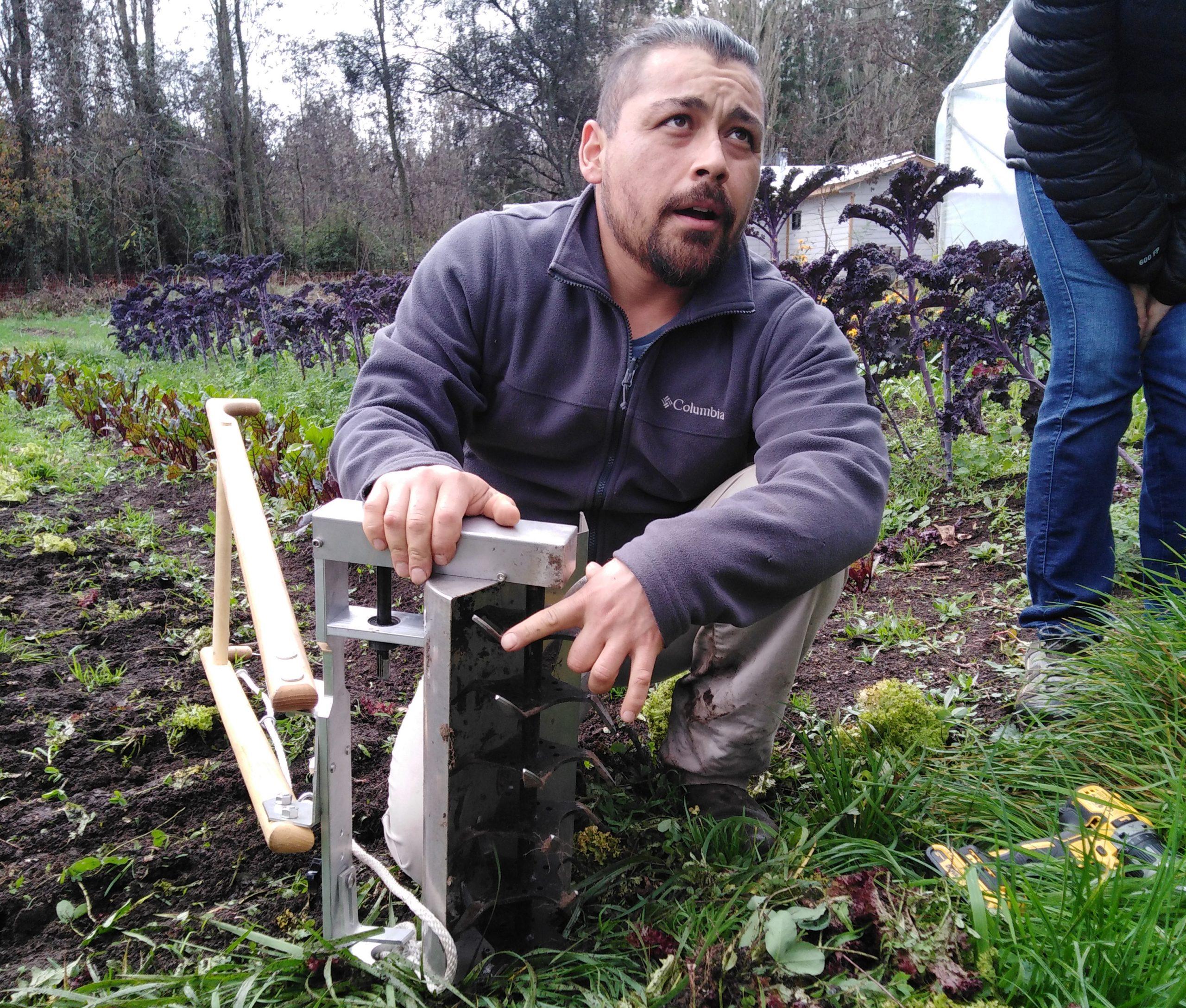 Micro-productor orgánico bio-intensivo Matías Lagos muestra una revolvedora superficial, herramienta que permite la incorporación eficiente de compost sin dañar la estructura del suelo