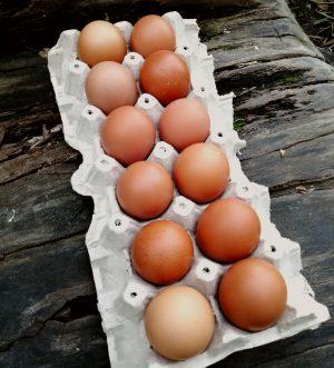 Promo Huevos