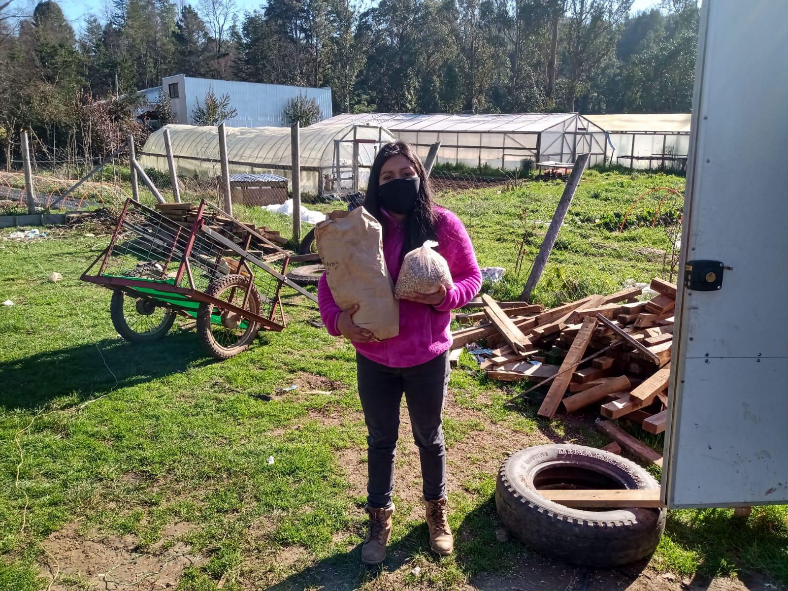 Isabel Inayao recibe las semillas de garbanzo y poroto para la siembra de su predio piloto en Paillaco