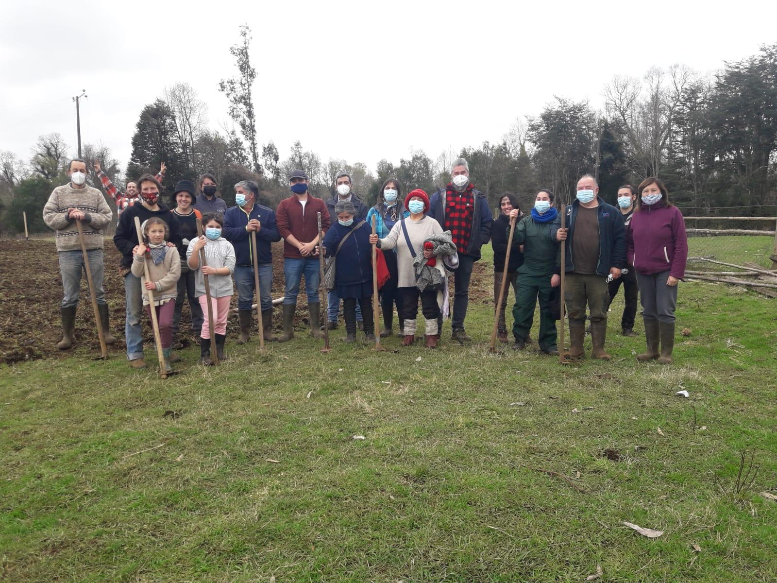 La comunidad de aprendizaje del cultivo agroecológico de legumbres, UACh, Cooperativa La Manzana y GORE Los Ríos, el pasado miércoles 15 de septiembre realizaron una siembra comunitaria de garbanzos y lentejas, y un taller de preparación de bocashi, en el predio piloto de Pelchuquín